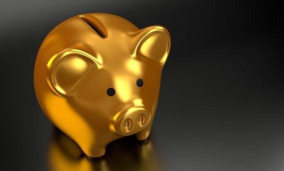 gold piggy bank | Lift Legal